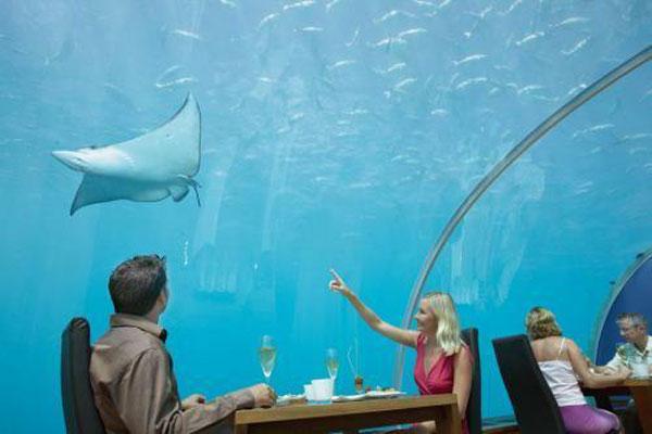 بالصور اغرب مطاعم فى العالم Under-Water-Restaurant